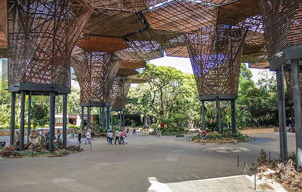 o que fazer em Medellín, na Colômbia